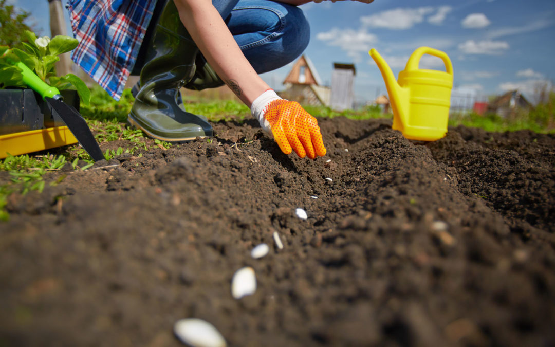 How To Protect Yourself When Gardening